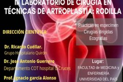 cartel-curso-artroscopia-20